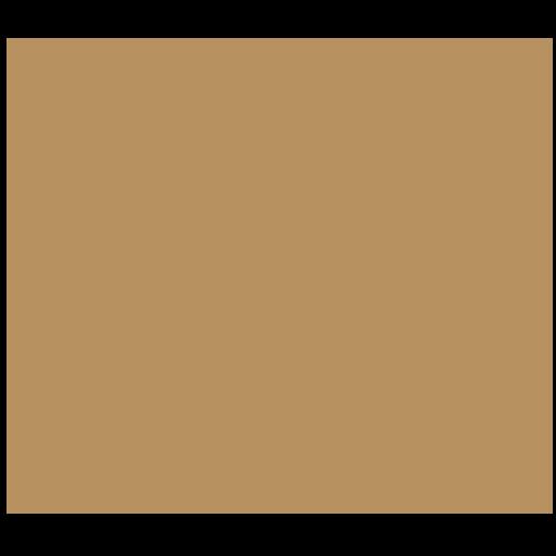 Zatrzymanie areszt tymczasowy